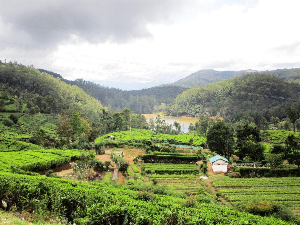 9 day Sri Lanka Itinerary