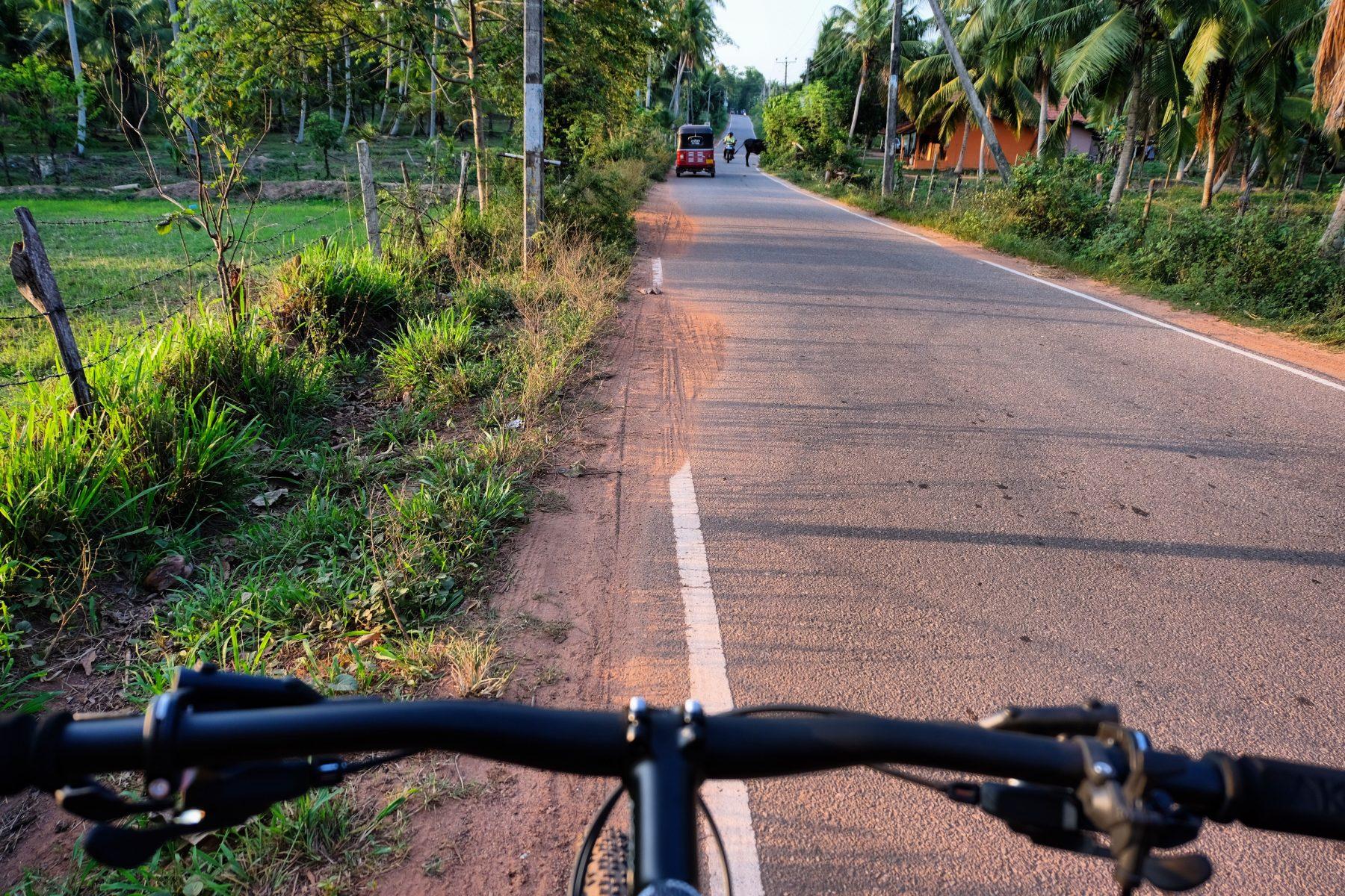Horathapola Estate Sri Lanka review Red Dot Tours