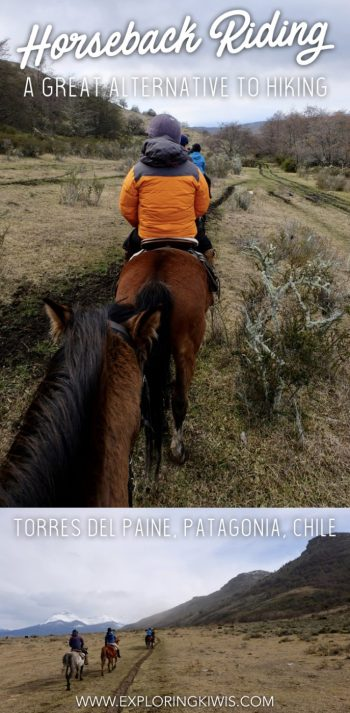 Torres del Paine is a favourite amongst hikers but nature-lovers can get outside and be more comfortable in the process. Explore Patagonia on horseback for an exciting ride through the most amazing scenery in Chile.