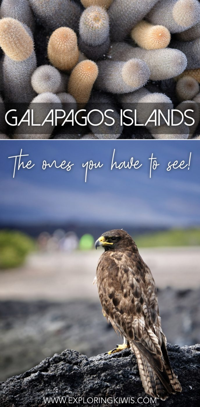 The Galapagos Islands are a bucket list destination but how do you know which is the best island to visit? Our guide explains what makes each island different and helps you answer the most difficult question - Which Galapagos Islands are the best to visit?