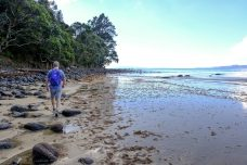 Walk along the beach and over the rocks