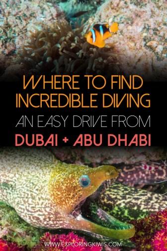 Scuba Diving in the UAE