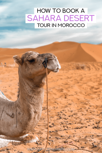 If you're headed to Morocco you need to read this guide to the Sahara Desert. It's got everything you need to know!