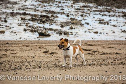 Airlie Beach-9