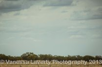 Charleville to Longreach