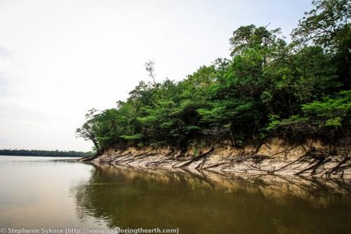 amazon river urubu adventure travel jungle piranha South America