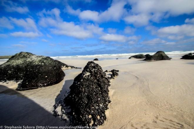 Galapagos, Islands, Galapagos Islands, Ecuador, South America, Darwin, Evolution, Travel, Adventure, Beach, Sunset, Tortuga Bay, Vesicular Basalt
