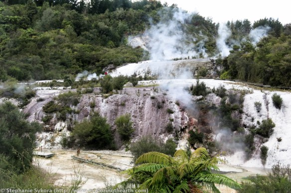 New Zealand, volcano, volcanoes, Taupo volcanic zone, taupo, geology, adventure, travel, stratovolcano, volcanology, field trip, geothermal, hot springs, mud pools, geysers, energy, boiling, gold deposit, metals, epithermal, orakei korako, TVZ, silica sinter, fault, sinter