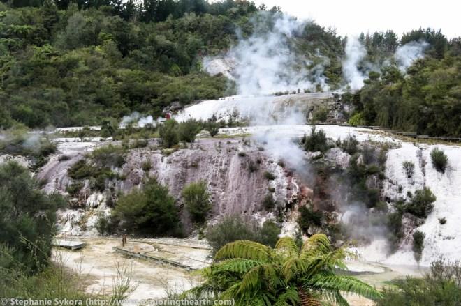 New Zealand, volcano, volcanoes, Taupo volcanic zone, taupo, geology, adventure, travel, stratovolcano, volcanology, field trip, geothermal, hot springs, mud pools, geysers, energy, boiling, gold deposit, metals, epithermal, orakei korako, TVZ, silica sinter, fault, sinter