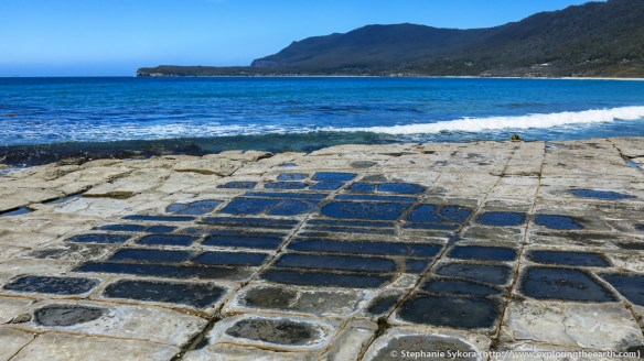 Tasmania, Australia, Travel, Geology, Adventure, Blog, Rocks, Tessellated Pavement, Joints, How did it form, formation, what is, explore, outdoors, Tasman Peninsula, Eaglehawk Neck, Photography, Tassie, nature, science, geoscience, cool rock formations, salt water, ocean, sea, shore, coast