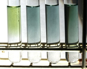 The  samples from left to right 5-8 with universal pH indicator added. The  green/blue colours  reveal  neutrality and alkalinity.