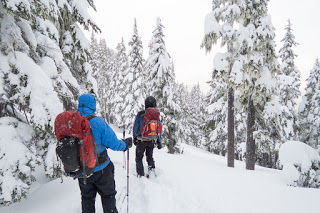 Mount Allen Brooks, Skitourig Strathcona Park