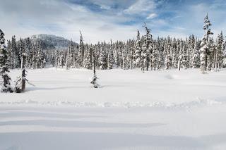 Raven Lodge to Lake Helen Mackenzie snowshoe