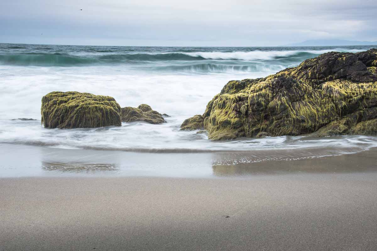 The North Coast surf engulfing rock and seaweed.
