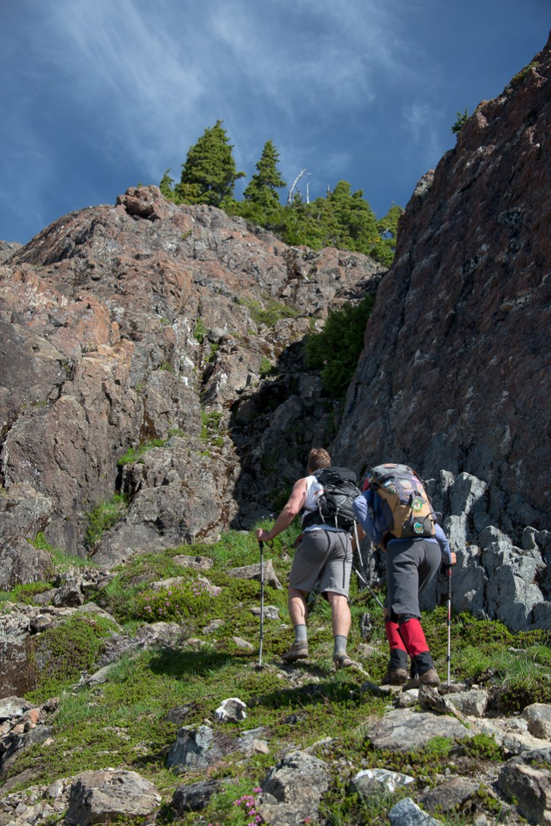 Approaching the bushy gully which leads to the summit plateau