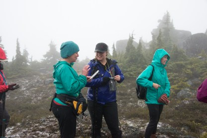 gemini mountain, hiking near nanaimo, matthew lettington, island mountain ramblers