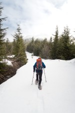 hiking, mountaineering-vancouver island, snowshoe, island mountain ramblers