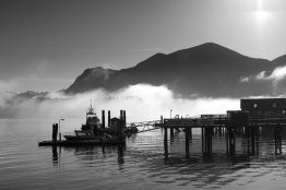 Tofino Harbour