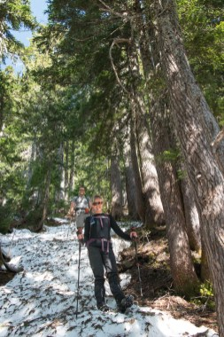 the group descending to the Gold-Heber pass on our hike to Mount Judson in Strathcona Park