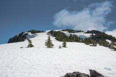 the route to Mount Judson in Strathcona Park