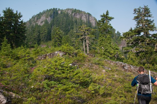 hiking to Mount Grey on Vancouver Island
