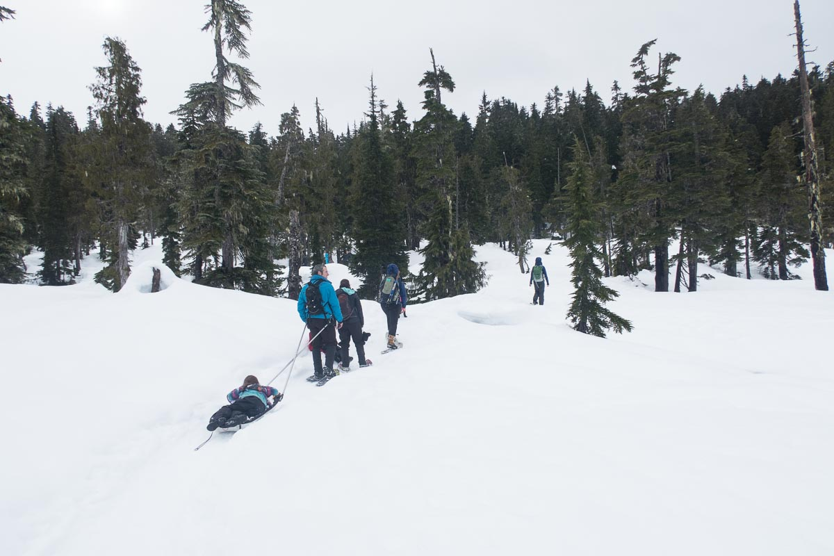 A family snowshoe loop: Featuring another family! - Island