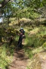 Hiking to Mount Tzouhalem