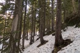 mount-sarai-hiking-2891