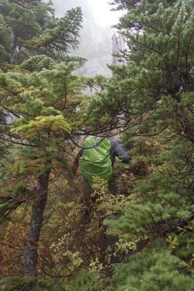 hiking to Mount Maitland