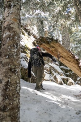Hiking to Mount Sir John in the Franklin Range on Vancouver Island