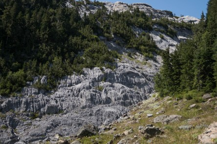 Just a few of the limestone features.