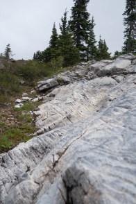 marble-meadows-morrison-mcbride-2952
