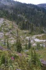 marble-meadows-morrison-mcbride-3001