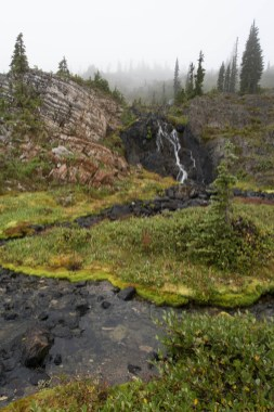 A trickle of water running over the rocks.