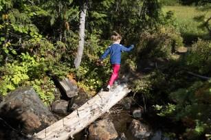 paradise-to-wood-mountain-5174