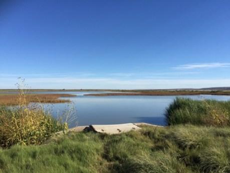 Bitter Lake National Wildlife Refuge Auto Tour