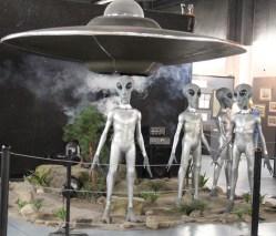 Gray Alien Display