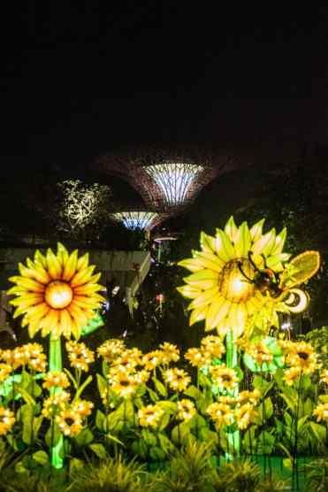 GardensbytheBaySingapore17