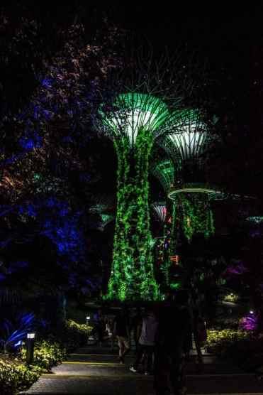 GardensbytheBaySingapore2