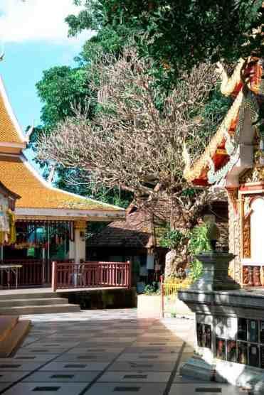 Watphrathatdoisuthep1 - Wat Phra That Doi Suthep tempel bezoeken vanuit Chiang Mai