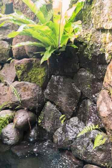 SebatuSanctuaryEcoResort5 - Sebatu Sanctuary Eco Resort: luxe glamping in de jungle van Ubud | Explorista's Top Hotels