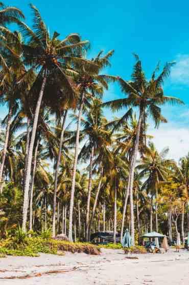 NusaPenida41 - Wat te doen op Nusa Penida (en zo kom je op Nusa Penida vanuit Bali)