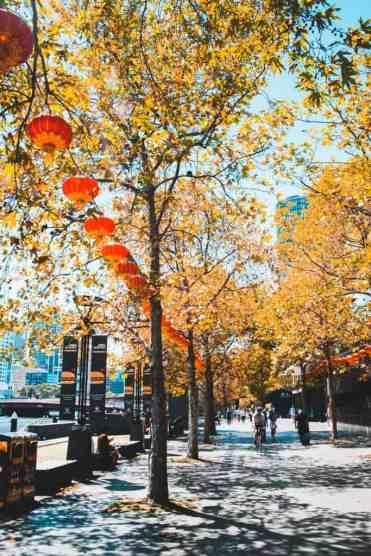Melbourne3 - Melbourne bezienswaardigheden & tips voor een toffe stedentrip