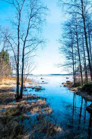 KoliNationalPark42 - Koli National Park in Finland: een Scandinavisch sprookje (dagboekje)
