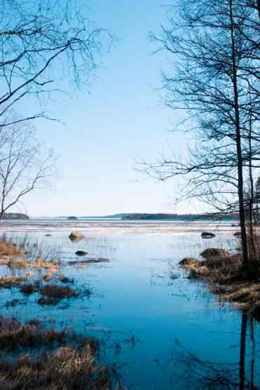 KoliNationalPark43 - Koli National Park in Finland: een Scandinavisch sprookje (dagboekje)