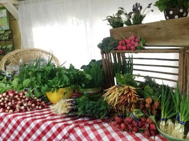 Maya's Farm Mini-Farmers Market