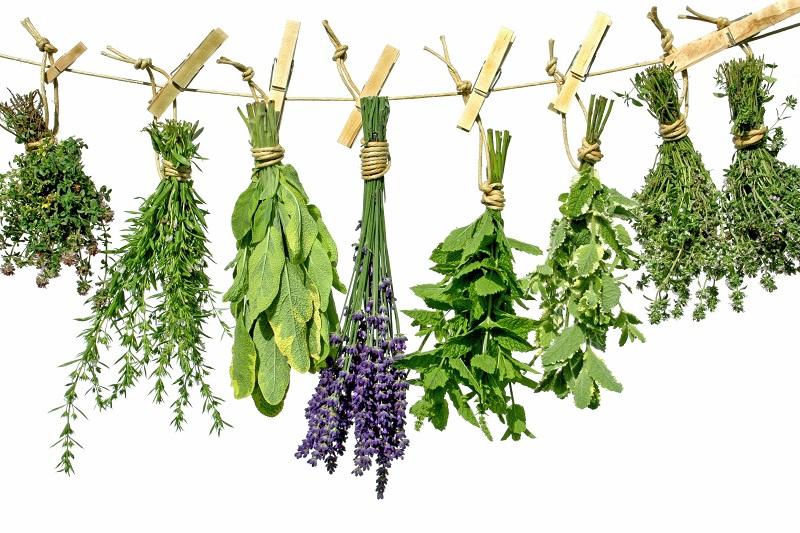 greek-herbs