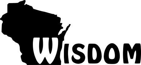 WISDOM-2010-Banner-logo