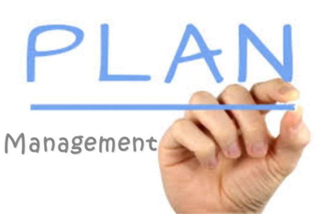 In export-import business plan, the management plan should also include risk management plan.