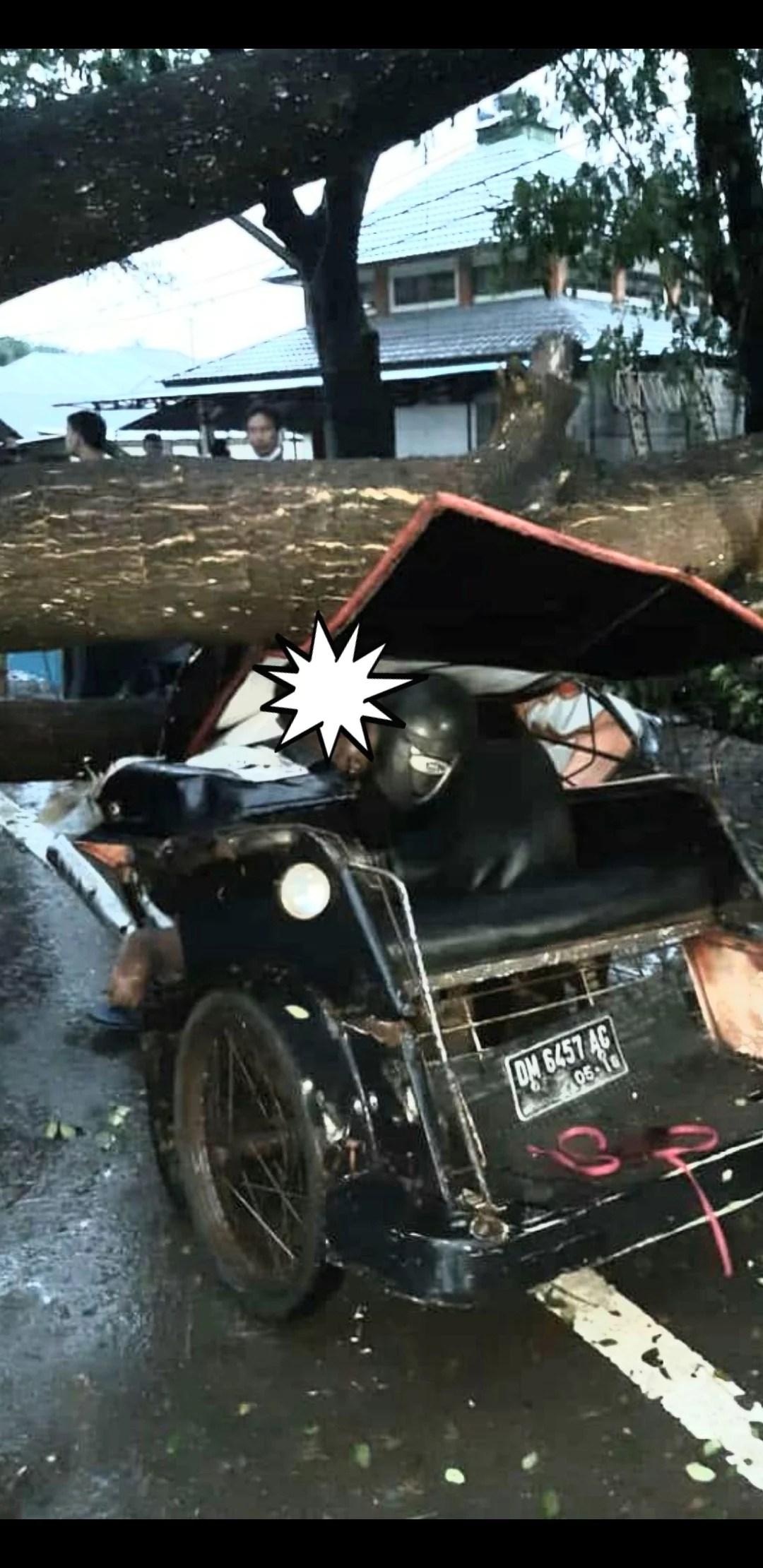 Tukang Bentor Gorontalo  Tewas Ditimpa Pohon Ketapang